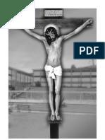 Libro Santas Llagas de Jesus