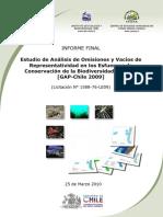 Informe Final GAP-Chile 2010-03-25