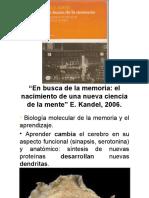 Proc cogn basi 18.pptx