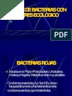 grupos bacterianos-ECOLOGIA