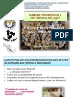 9. Plagas y Enfermedades Del Cultivo Del Café