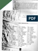202153159-Limba-Latina-manual-pentru-clasa-a-VIII-a.pdf