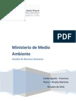 Informe diagnóstico RRHH Ministerio de Medio Ambiente Chile