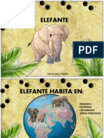 ELEFANTE - MAITE DIAZ si no resulta el otro.pdf
