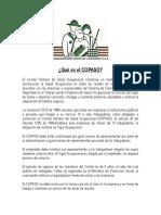 copaso_empresa.pdf
