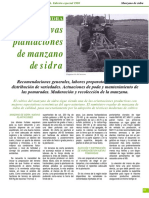Como Hacer Plantacion Manzano de Sidra