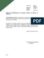 Autorizacion Pierre - Gamarra Amesquita