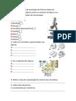 Ficha de Trabalho/Avaliação de Ciências Naturais  6ºAno