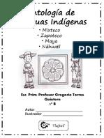 Lenguas indigenas.pptx