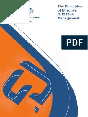The Principles of Effective OHS Risk Management pdf
