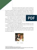 Casamento Civil TCC[1]