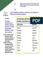 T15-sintesis.pdf