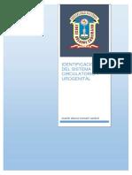 Identificacion Del Sistema Circulatorio y Urogenital 2013-38125