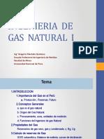 Ingenieria de gas 1