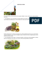 Usos de La Flora