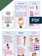 Leaflet Kehamilan
