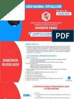 Curso Invierte-peru 450