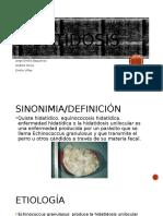 Hidatidosis (4) [Autoguardado]