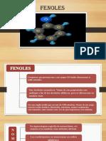 Exposicion de Fenol 2.0