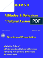 05 B Cultural Awareness.ppt