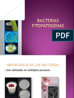Bacterias Fitopatogenas.pptx Exam