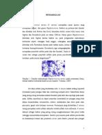isi_Buku_MRSA_2012_OK.pdf