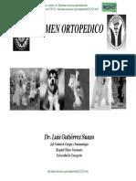 ortopedia animal.pdf