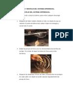 Desmontaje-y-montaje-del-sistema-diferencial.docx
