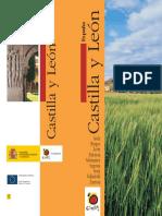 CASTILLA_LEON-ES-2009.pdf