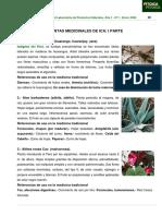 Uso de Plantas Medicinales 1