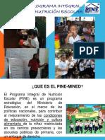 Presentación Resumen Del Quehacer Del Pinepresentar