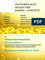 Prezentare Proiecte Europene 2013