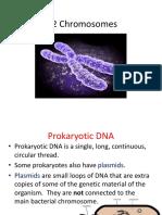 Chromosome_ppt_3.2.pptx