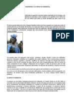 grandes obras de ingeniería y su impacto ambiental (Examen final).docx