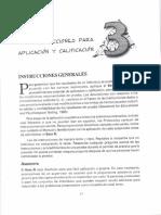INTRUCCIONES APLICACION BETA III.pdf