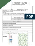 Informe Simulacion Flujo Magnetico