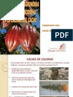Calidad Integral Del Cacao - Influencia Del Manejo Agronomico, Cosecha y Beneficio Del Cacao