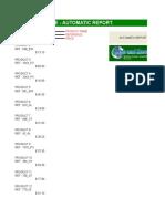 Macro Excel Example - Automatic Report