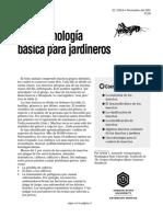 Entomología Básica.pdf