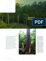 The Status of PH Forests.pdf