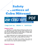 CASTILLA - Safety Practices of Cebu Mitsumi