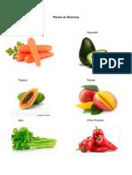 Plantas de Alimentos, Medicinales, Adorno y Madera