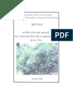 Hướng dẫn kỹ thuật trồng nhãn Hương chi.