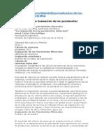 Transcripción de Evaluación de Los Yacimientos Minerales