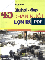 45 Cau Hoi Dap Chan Nuoi Lon Rung _ Dao Le Hang