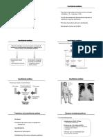 DIGITALICOS- MEC. ACCION.pdf