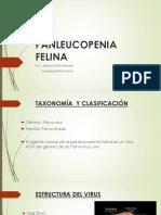 Panleucopenia Felina.pptx