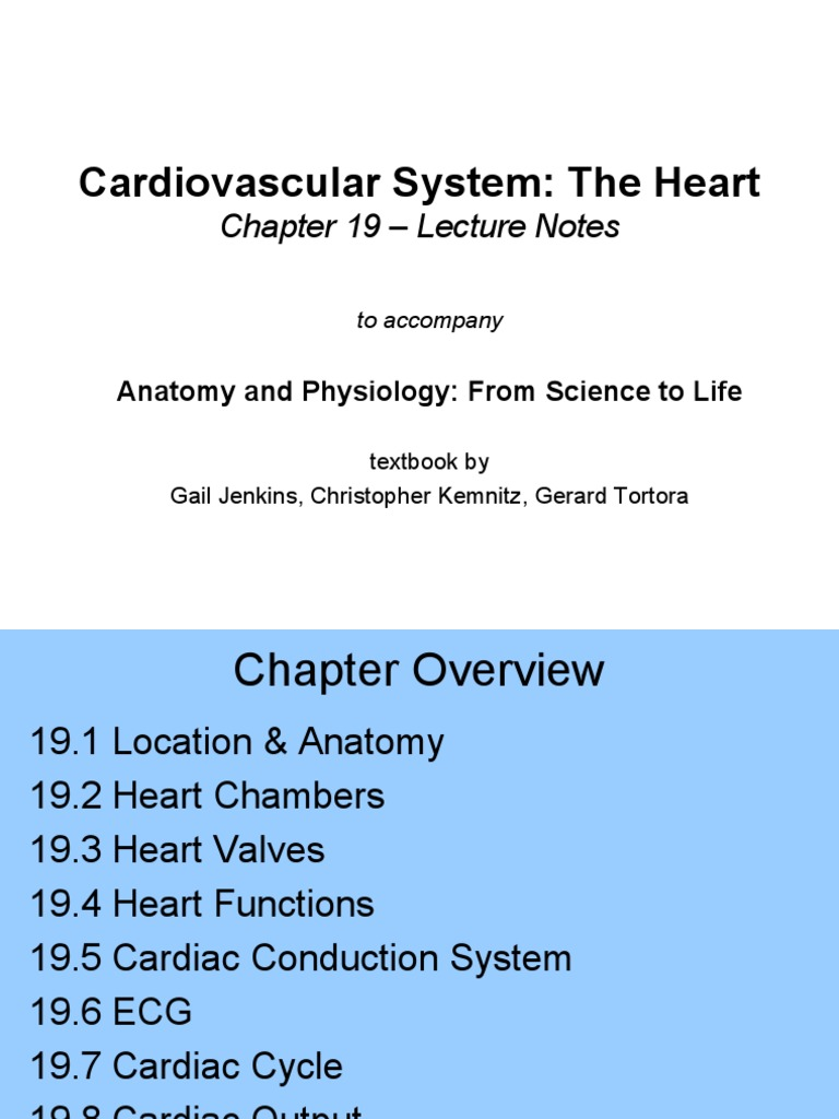 Anatomy of the Heart | Heart Valve | Coronary Circulation