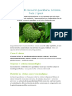 Beneficios de Consumir Guanábana