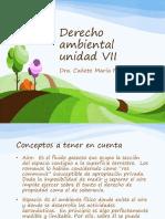 Derecho Ambiental Bolilla 7